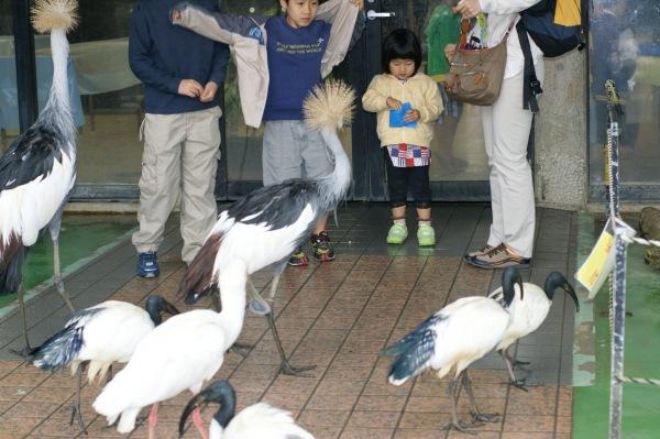 ネオパークオキナワ 名護自然動植物公園
